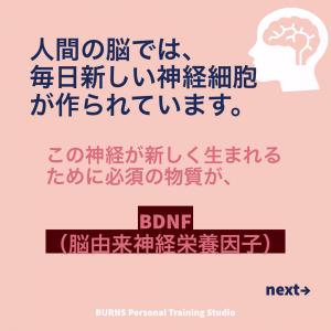 人の脳では毎日新しい神経細胞が作られています