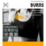 体脂肪燃焼に効果的な栄養素